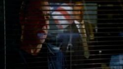 Criminal Minds: P911