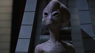 Stargate SG-1: Fair Game