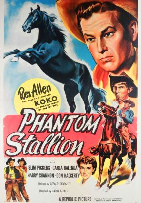 The Phantom Stallion