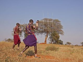 Africa: The Future