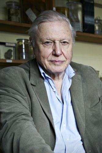 David Attenborough | 【Putlocker】| Putlocker.page
