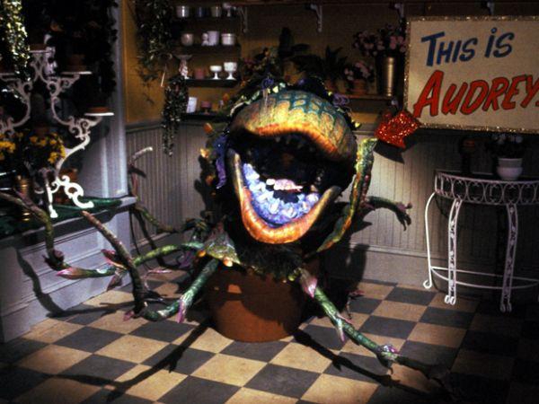 Little shop of horrors 1986 watch online