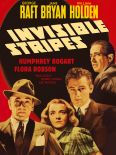 Invisible Stripes