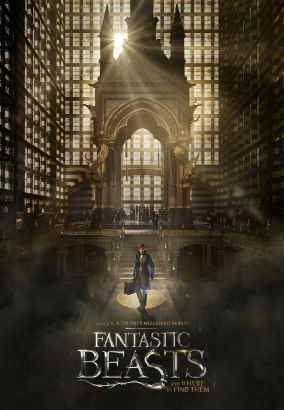 Fantastic beasts and where to find them / directed by David Yates &#59; written by J.K. Rowling.