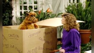 ALF: We're so Sorry, Uncle Albert