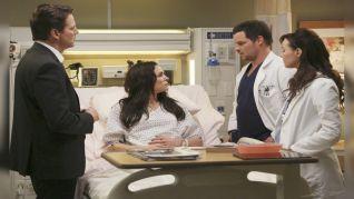 Grey's Anatomy: Hard Bargain
