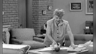 I Love Lucy: Pregnant Women Are Unpredictable