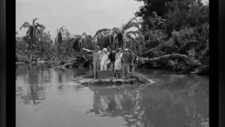 Gilligan's Island: Three to Get Ready