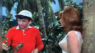 Gilligan's Island: Operation: Steam Heat