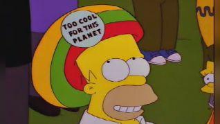 The Simpsons: Homerpalooza