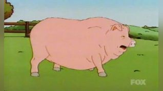 King of the Hill: Pigmalion