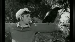 Gilligan's Island: The Sound of Quacking
