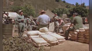 M*A*S*H: Cementing Relationships