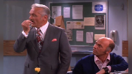 The Mary Tyler Moore Show: Ted Over Heels