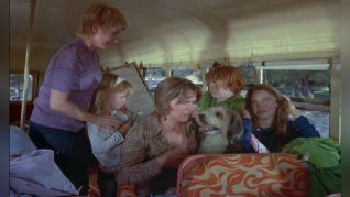 The Partridge Family: But the Memory Lingers On