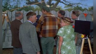 Green Acres: You Ought to Be in Pictures