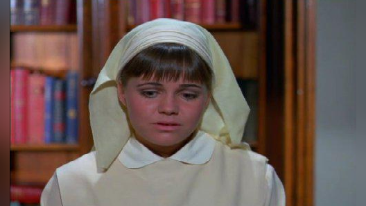 The Flying Nun: With a Friend Like Him