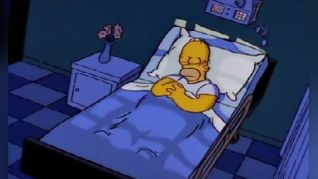 The Simpsons: Homer's Triple Bypass