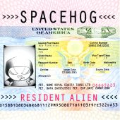 Spacehog - In the Meantime