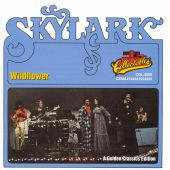 Skylark - Wildflower
