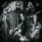 Aerosmith - Dude Looks Like a Lady