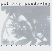 Poi Dog Pondering - Complicated