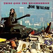 Joe Walsh - A Life of Illusion