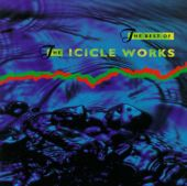 Icicle Works - Whisper to a Scream (Birds Fly)