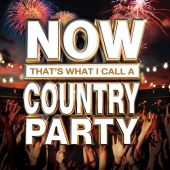 Gretchen Wilson - Here For the Party [Album Version]