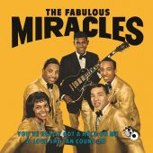 Smokey Robinson & the Miracles - You've Really Got a Hold On Me