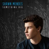 Shawn Mendes - Something Big