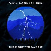 Calvin Harris - This Is What You Came For