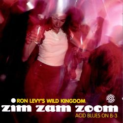 Zim Zam Zoom: Acid Blues on B-3