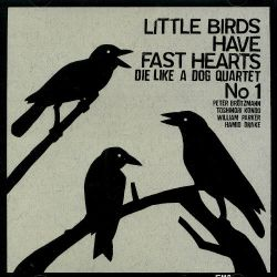 Little Birds Have Fast Hearts, No. 1