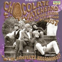 Melts in Your Brain Not on Your Wrist: The Complete Recordings 1965 to 1967