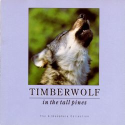 Timberwolf in the Tall Pines