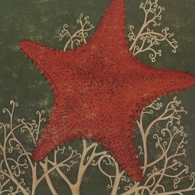 The Blithe Sons - Arm Of The Starfish