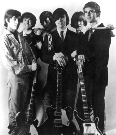 Standells The Best Of The Standells