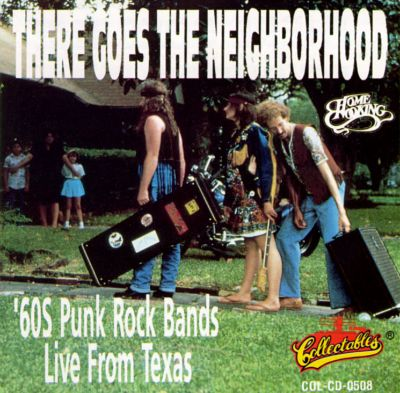 There Goes The Neighborhood 60s Punk Rock Various