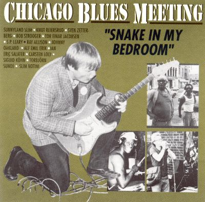 Chicago Blues Meeting: Snake in My Bedroom - Various Artists  Songs ...