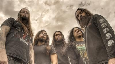 Disgorge