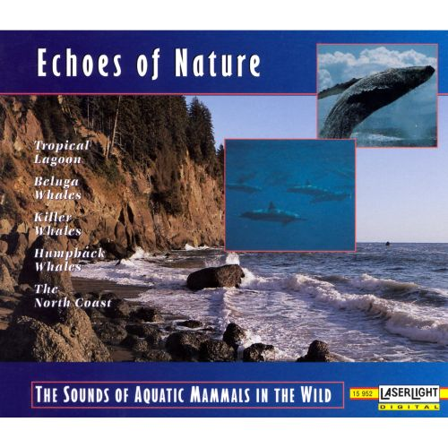 Echoes of Nature: Sounds of Aquatic Mammals in the Wild