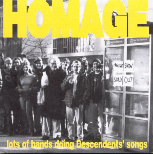 Homage: Lots of Bands Doing Descendents' Songs