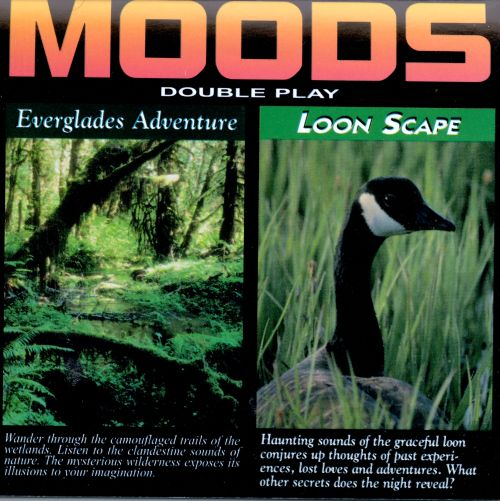Florida Everglades & Loon Scape