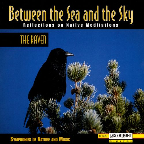 Between the Sea an the Sky: The Raven
