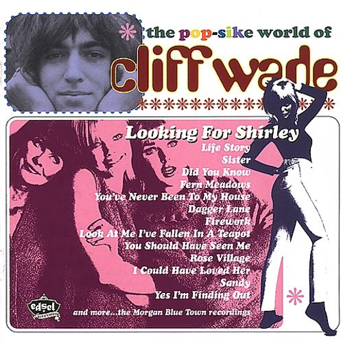 Looking for Shirley: Pop-Sike World of Cliff Wade