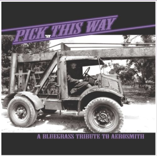 Pick This Way: A Bluegrass Tribute to Aerosmith