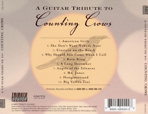 A Guitar Tribute to Counting Crows