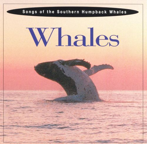 Songs of the Southern Humpback Whales