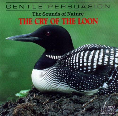 Sounds Of Nature: The Cry Of The Loon